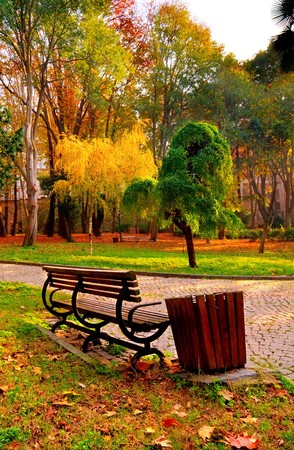 A Sunny fall day at Istanbul, Gulhane Park.
