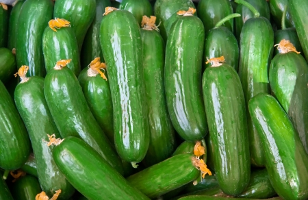 Organic Fresh Cucumbers With Flowers Still On, At A Street Market Stock Photo