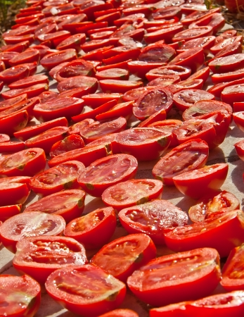 Fresh Organic Tomatoes Under Hot Sun To Dry; tomatoes cut in half, salted, and put under the sun to dry