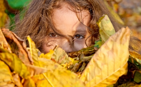 Holding A Bunch Of Yellow Leaves In Her  Stock Photo - 16847470
