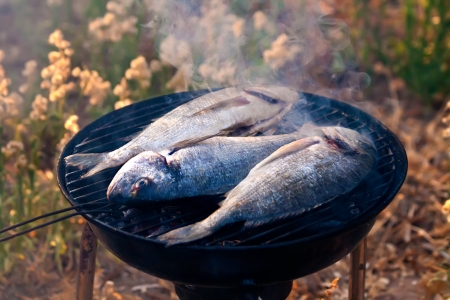 Sea Bream Fish Grilling On BBQ in the garden Stock Photo
