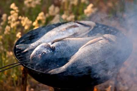 Sea Bream Fish Grilling On BBQ in the garden Stock Photo - 23092235