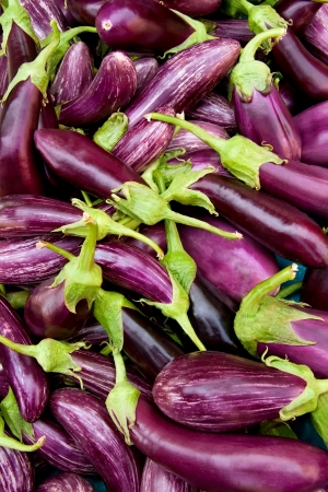 Varieties of Eggplant As A Background Stock Photo