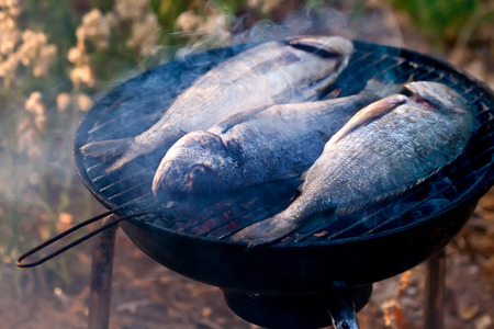 dorade: Sea Bream Fish Grilling On BBQ in the garden Stock Photo