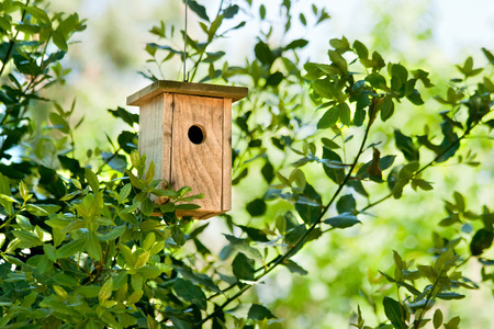 Wooden Birdhouse Hanging In The TreeHandmade wooden birdhouse hanging in a tree in spring Stock Photo