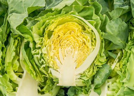 Organic Fresh White Cabbage Cut In Half