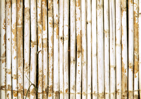 Old Bamboo Wall With Weathered White Paint Background Texture photo