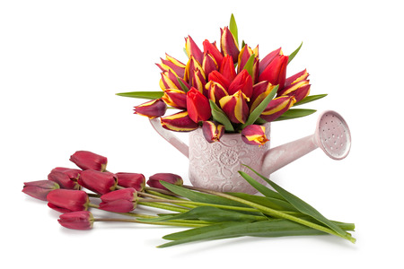 watering pot: Watering pot with a bouquet of tulips Isolated over white background Stock Photo