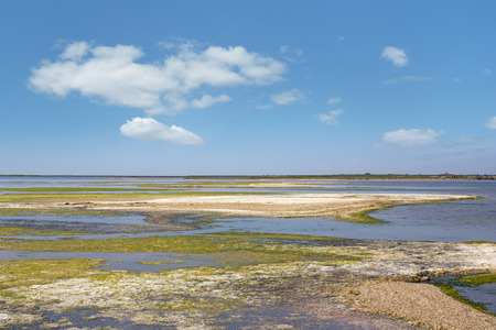 salinity: Steppe saline soils, light clouds in the blue sky over the salt lakes
