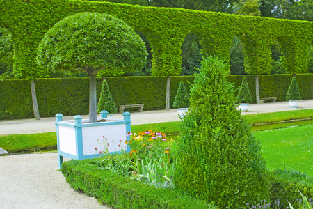 hedges: Beautiful garden with green hedges with trees and flowers Stock Photo