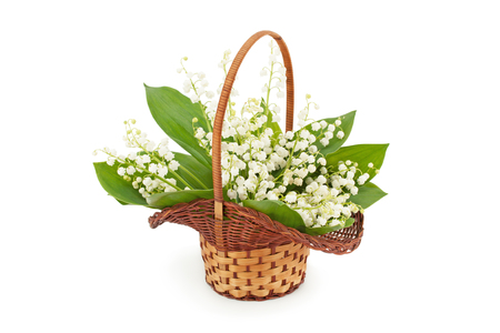 mayflower: Bouquet of white lily of the valley (Convallaria majalis) in basket on white background. Stock Photo