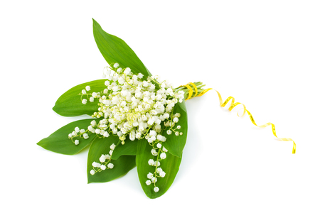 Bouquet of white lily of the valley (Convallaria majalis) on white background.