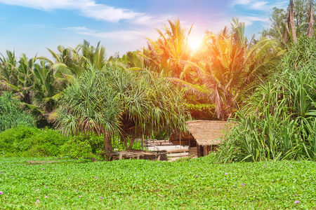 Old fishing huts on sandy beach of the ocean on the island of Sri Lanka.