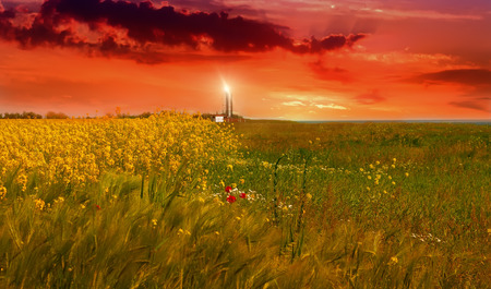 Lighthouse in a field with bright flowers and grass in the south of Ukraine against the background of a fiery sunset.