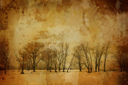 grunge winter (special fx with dark vignetting,all art elements and prints made by me) photo