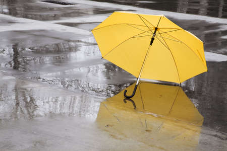 rainy season: yellow umbrella