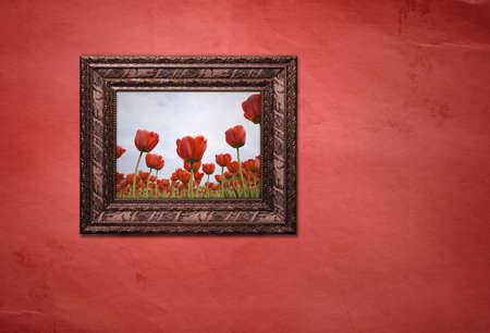 tulips Stock Photo - 2860887