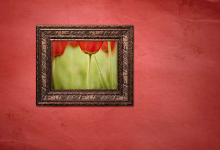 tulips Stock Photo - 2860885