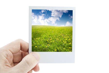 nature Stock Photo - 4445992