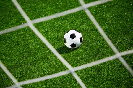 soccer concept witn green field  Stock Photo - 14256083