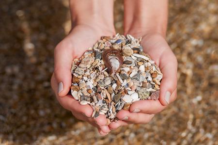 women's hands: Womens hands holding seashells and stones