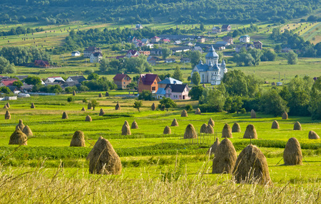 Field with haystacks. Rural landscape; Hey rolls on the field at the mountain in Ukraine. Banco de Imagens