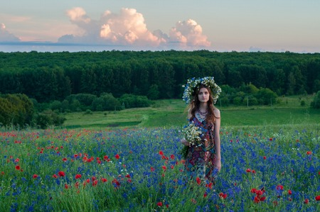 Girl with a wreath of flowers. Face of beautiful ukrainian girl in a wreath of summer flowers on nature. Girl on the field with poppies. Fantasy art photography.