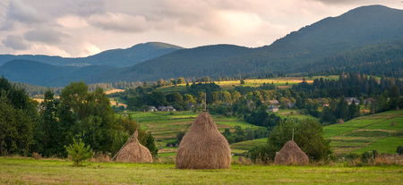 Field with haystacks in the sunny day. Rural landscape; hey rolls on the field at the mountains in Ukraine. Panoramic photo of a rural landscape in the background of mountains.