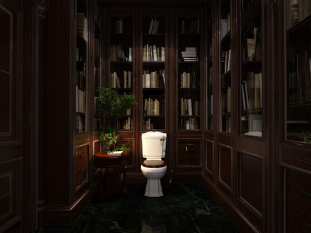 comfortable library with books and toilet