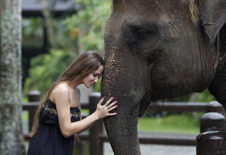 モデルの女性が公園で大きな象を抱き締める