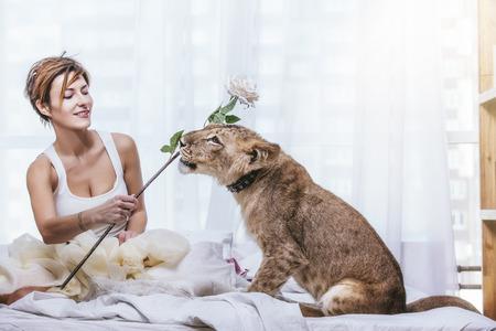 Mooie modieuze jonge vrouw met een schattige kleine levende leeuwwelp