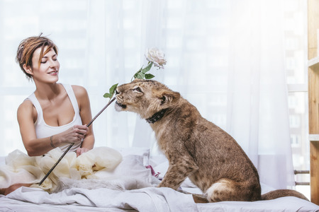 Beautiful fashionable young woman with a cute little alive lion cub