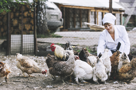 Woman in Bathrobe smiling young veterinarian checks the hens on a small private farm