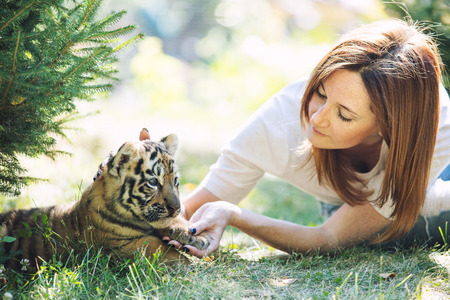 Pequeño cachorro de tigre bebé con una mujer que lo cuida y lo abraza en la naturaleza Foto de archivo
