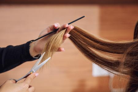 Junge schöne Kundin macht einen Haarschnitt von einem professionellen Friseur in einer Schönheitssalon-Nahaufnahme Standard-Bild