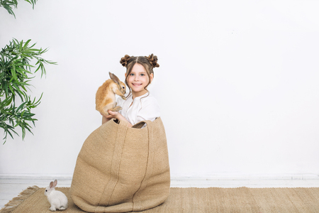 Child girl beautiful cute cheerful and happy in a wicker bag with small animals rabbits on a white wall background Stock Photo