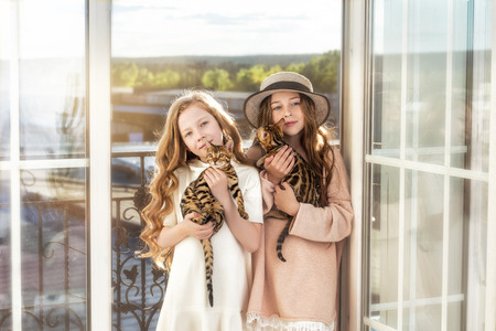 Kids two girls beautiful and happy with little cute Bengal kittens together Reklamní fotografie