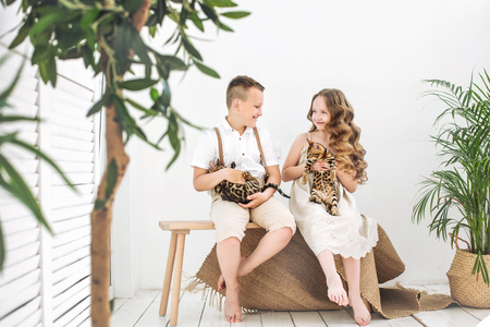 Kids boy and girl are beautiful and happy with little cute Bengal kittens together Reklamní fotografie