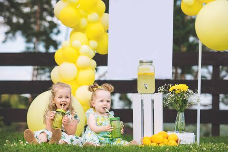 Little cute kids, two girls, beautiful and happy on the green grass with balloons and lemonade