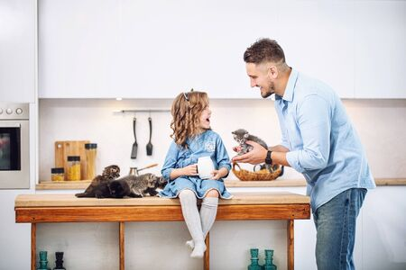 Family, father and sweet daughter happy together with little fluffy kittens in the kitchen in a bright home interior