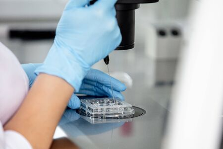 Hands of a doctor in gloves working in a laboratory with a microscope close up