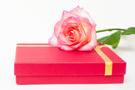 Red box and pink rose on a white background. A gift for the beloved. Your gifts.