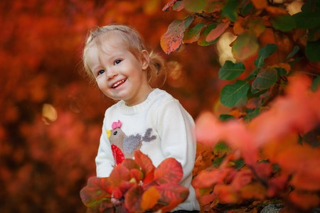 Little girl playing with autumn leaves in the park. Happy child with a bouquet of leaves in the forest. - Image