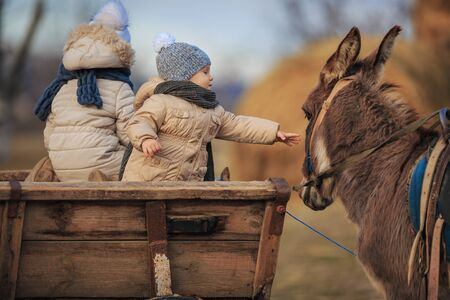 Children play in the carriage with a donkey in the village. Kids in warm clothes on the farm. Stock Photo