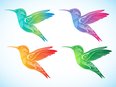oiseau dessin: Colibri color� 2 Illustration