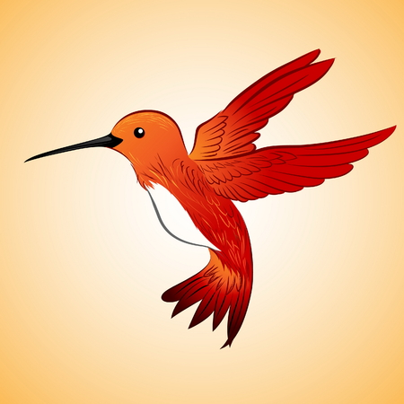 bird of paradise: Red hummingbird floating