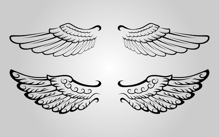 Set of wing Stock Vector - 9404768