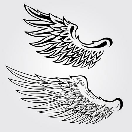 Wing Illustration Vector
