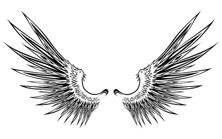 Abstract Wing Vector