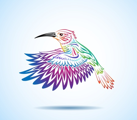 birds of paradise: Colorful hummingbird 2